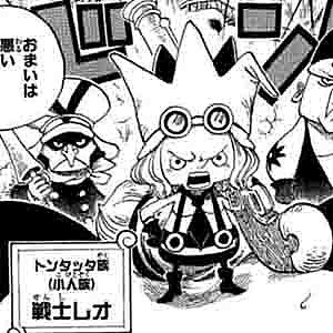 【ワンピース】レオの海賊団「トンタッタ ...